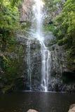 Плакат водопада Стоковое фото RF