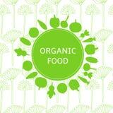 Плакат еды Organik, предпосылка Стоковое Изображение RF