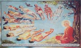 Плакат жизненного цикла Стоковые Фотографии RF