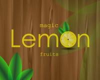 Плакат лимона с цитрусовыми фруктами изображения Стоковое Фото