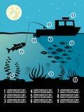 Плакат рыбной ловли Infographic Стоковое Фото