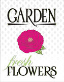 Плакат свежих цветков сада Стоковое Изображение