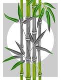 Плакат с бамбуковыми заводами и листьями Стоковое Изображение