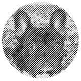 Плакат с портретом французского бульдога Стоковые Фотографии RF