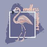 Плакат фламинго, карточка Стоковое фото RF
