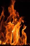 Пламена пожара на черной предпосылке Предпосылка текстуры пламени огня пламени Закройте вверх пламен огня изолированных на черной стоковое фото rf