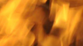 Пламена Blured конца огня вверх сток-видео