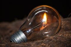 Пламенеющая электрическая лампочка Стоковое Изображение RF