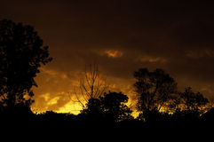 пламенистое небо Стоковое Фото