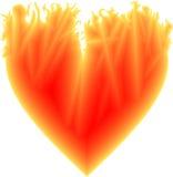 Пламенистое сердце Стоковое Изображение RF