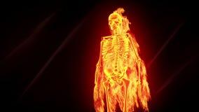 Пламенистый скелет иллюстрация вектора