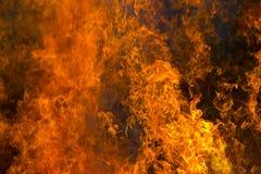 пламени пожара предпосылки напольное черного горящего открытое померанцовое Стоковые Изображения