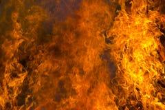 пламени пожара предпосылки напольное черного горящего открытое померанцовое Стоковое Фото