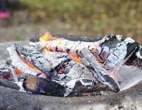 Пламя лагерного костера Стоковое фото RF