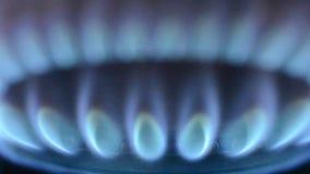 Пламя газа сток-видео