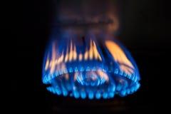 Пламя горя на газовой плите Стоковое Изображение RF
