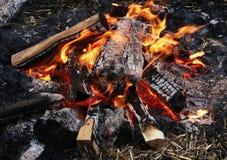 Пламя костра, разожженное на открытом воздухе стоковое фото rf