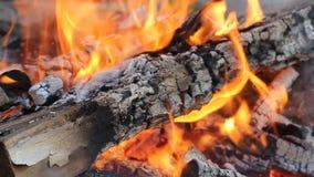 Пламя огня. Горящие журналы