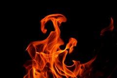 Пламя огня на черной предпосылке Стоковое Изображение RF