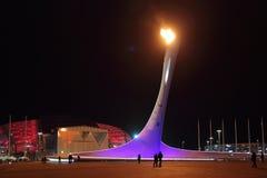Пламя Paralympic Стоковые Фотографии RF