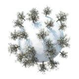 Планета 3D зимы Стоковое Изображение