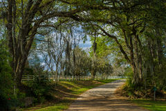 Плантация rosedown входа, Луизиана стоковое фото rf