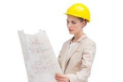 План строительства милого архитектора рассматривая Стоковая Фотография