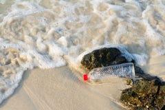 Пластичная бутылка питья на пляже, концепции воды на пляже Стоковые Изображения RF