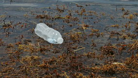 Пластичная бутылка плавая в океан сток-видео
