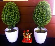 Пластичные деревья и удачливый кот для того чтобы украсить кофейню стоковые фото