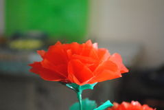 Пластичный цветок Стоковые Изображения