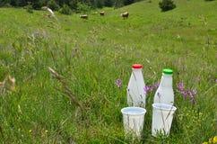 2 пластичных бутылки и чашки Стоковые Фото