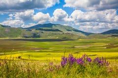 Плато горы рояля большое, Умбрия, Италия Стоковые Изображения RF