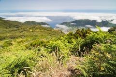Плато Пол da Serra в острове Мадейры Стоковое Изображение RF