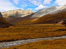 Плато Тибета Стоковая Фотография RF