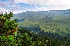 Плато Lago Naki долины в Adygea Стоковая Фотография RF