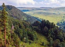 Плато Lago Naki долины в Adygea Стоковое Изображение