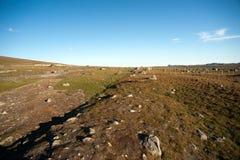 Плато Valdresflye горы, Jotunheimen Стоковые Изображения