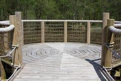 Платформа просмотра озера леса Стоковые Изображения RF