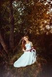 Платье девушки около дерева на заходе солнца Стоковое Изображение RF