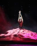 Платье красного цвета вина Стоковые Изображения