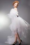 платье невесты предпосылки красивейшее изолировало белизну венчания портрета Decoratio свадьбы Стоковое Изображение RF