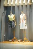 Платье Стоковое Фото