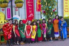 Платье Ao Dai въетнамское национальное Стоковое Изображение