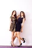 Платья коктеила Стоковое Изображение RF