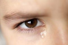 Плача маленькая девочка Стоковая Фотография RF