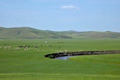 Племена степи Khan золотой орды берега реки Mergel монгольские Стоковые Изображения RF