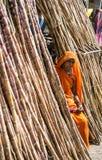 Племенная дама продавая сахарный тростник Стоковая Фотография RF
