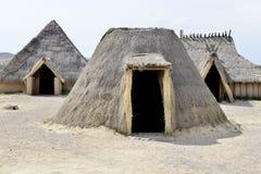 Племенные дома в Африке стоковые изображения