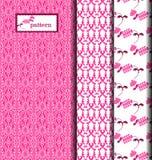 Племенные розовые нашивки Стоковые Фото